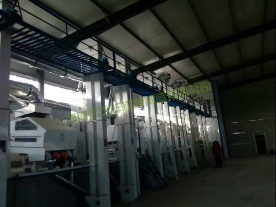 日加工100吨小米成套设备