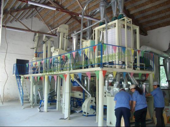 20吨玉米加工成套设备