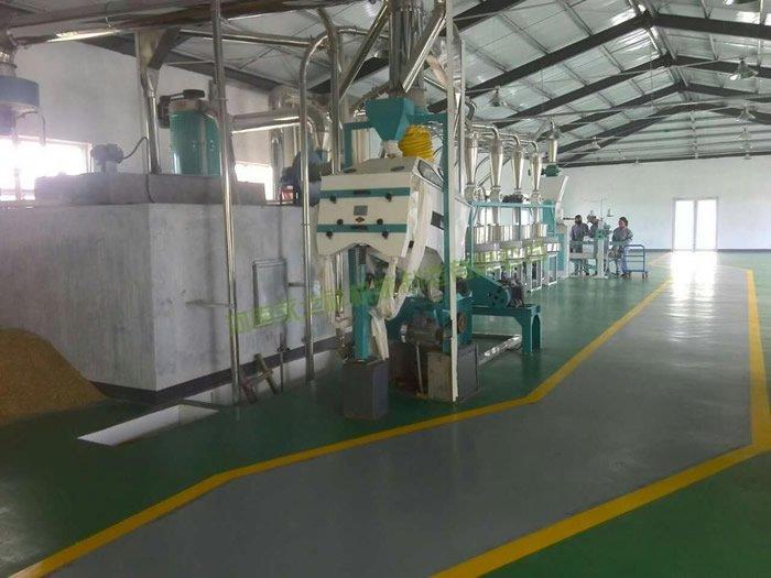 山东东营石磨面粉机、豆类抛光设备投入生产